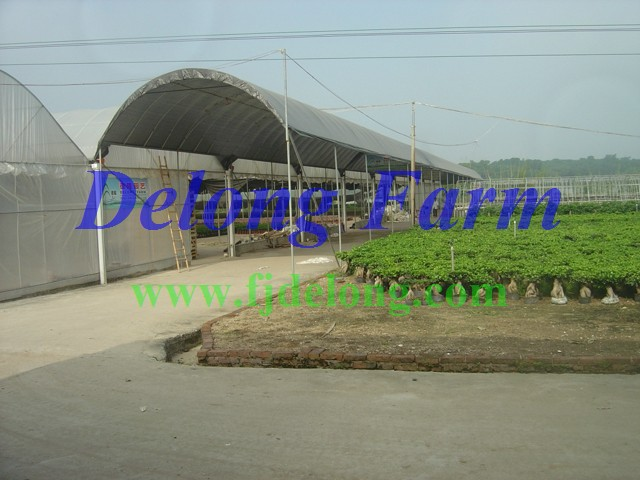 DELONG FARM OVERVIEW